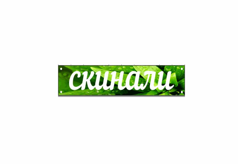 Скинали 39 в Калининграде